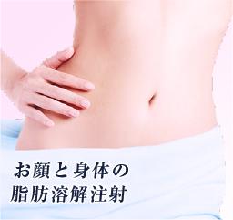 お顔と身体の脂肪溶解注射
